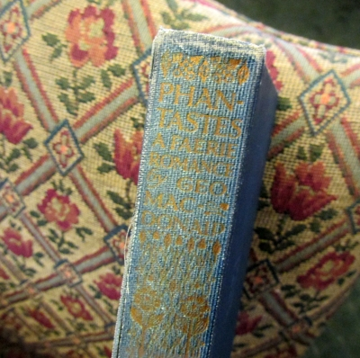 Spine of Phantastes by George MacDonald.