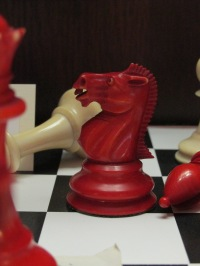 Detail of the pieces from the chess set belonging to Owen Barfield.