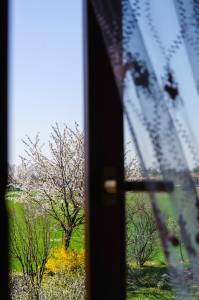 Spring landscape through a window